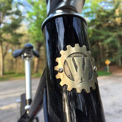 Bronze head badge from @jengreenheadbadges standard attire on #weavercycleworks #custombicycles