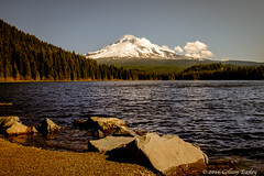 Mt Hood & Trillium Lake (Colleen Easley) Tags: oregon mthood trilliumlake