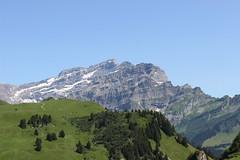 Envole-moi [in explore] (Nathalie_Dsire) Tags: summer schweiz switzerland suisse svizzera t paraglider ch vaud bretaye ollon