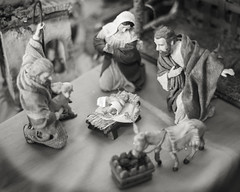 Merry Christmas (magnetic_red) Tags: christmas blackandwhite peace shepherd mary donkey manger nativity babyjesus sheperd joeseph
