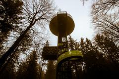 De Bostoren (MJ Klaver) Tags: arboretum wideangle 1020 sigma1020mm putten 100x sigma1020mmf35exdchsm landgoedschovenhorst bostoren image36100 100xthe2016edition 100x2016
