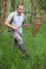 Marais Vernier-8 (Gwenn Dubourthoumieu) Tags: france nature normandie geo marais ecologie environement maraisvernier