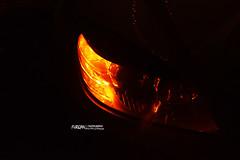 Eyes! (Furqan Faiz) Tags: new beauty night lens nikon nikkor nikkor1855mm nikonphotography nikond5300 nikontop