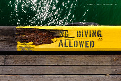Diving allowed (Robert Lang Photography) Tags: ocean wood sea brown color colour green texture water lines yellow horizontal danger contrast swimming warning dangerous jumping timber jetty stock diving nopeople minimal vandal signage vandalism simple destroyed minimalistic warningsign destroy allowed robertlang brokensign jettyjumping divingallowed robertlangportlincoln robertlangphotography wwwrobertlangcomau robertlangaustralia