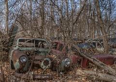 DSC08574.ARW-01 (juice95m3) Tags: abandoned rust vintagecar automobile junkyard oldcars classiccars