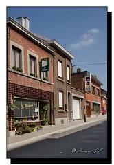 Queue du bois (hanquet jeanluc) Tags: belgique be lige queuedubois remilevandervelde queueduboislige fleuristelemimosa