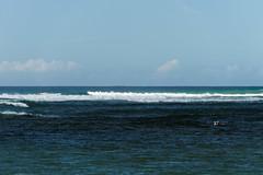 DSC02723_DxO_Grennderung (Jan Dunzweiler) Tags: hawaii jan kauai hanalei hanaleibay dunzweiler jandunzweiler