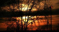 Sunset, 02-05-16 (TJ Gehling) Tags: sunset tree clouds streetlight bart elcerrito february5 bayarearapidtransit elcerritoplaza elcerritoplazastation 020516 february52016