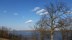 Mississippi River from Jefferson Barracks National Cemetery in St. Louis County, MO_20160206_153143 (Wampa-One) Tags: winter tree clouds river arch gatewayarch mississippiriver jb cityskyline stlouismo jeffersonbarracksnationalcemetery stlouiscountymo