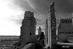 Castelo de Montemor o Velho (verridrio) Tags: bw white black castle monochrome monumento sony negro preto ruinas castelo bianco nero mondego montemorovelho