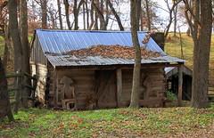Log Cabin on Road to War Eagle Mill - Washington county, Arkansas (danjdavis) Tags: logcabin arkansas washingtoncounty
