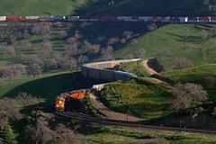 Bealville squiggles (Moffat Road) Tags: california ca railroad grass train shadows curves locomotive bnsf lowsun allard tehachapipass bealville vehicletrain