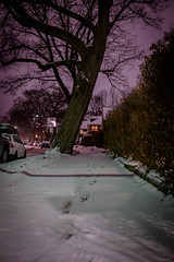 2/15/16 Day 142 (GarrettHerzig) Tags: trees winter snow cold night fuji purple footprints jamaicaplain 365project x100t fujix100t