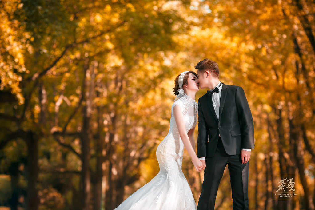 婚攝英聖-婚禮記錄-婚紗攝影-25152509384 20e74229ca b