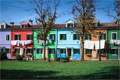 141101 burano 503 (# andrea mometti | photographia) Tags: venezia colori burano merletti