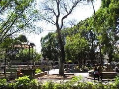"Oaxaca: el Zócalo <a style=""margin-left:10px; font-size:0.8em;"" href=""http://www.flickr.com/photos/127723101@N04/25336940990/"" target=""_blank"">@flickr</a>"