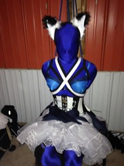 Blue Ballerina Doll - 4 (AgentDrow) Tags: doll bondage bdsm corset armbinder zentai