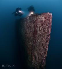 DSC_7824 (Yiannis Iliopoulos) Tags: sport divers underwater dive scuba diving shipwreck scubadiving diver wreck