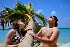 Martinique (SyK.PsyKeDeLic) Tags: voyage mer beach nature martinique dom ile vegetation syk paysage plage palmier ete iguane outremer antille semmer psykedelic sykpsykedelic