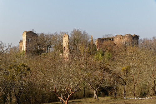 03 Murat - Château