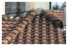 Roof tiles (Gi_shi) Tags: street roof urban nikon geometry tetti structure tiles geometrie tegole nikonitalia d7200