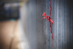 A Frayed Knot (flashfix) Tags: ontario canada lines metal fence outside construction nikon bokeh steel ottawa rope knot barrier constructionsite 2016 redrope d7000 55mm300mm 2016inphotos april262016