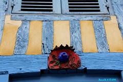 La Maison bleue et la fleur Bleue (Barnie76@ ,) Tags: fleur bleu normandie habitat calvados dcoration habitation colombages beaumontenauge canon60d habitatancien