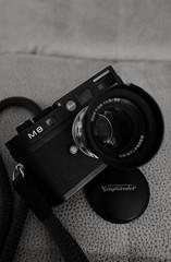 classic (Rene_1985) Tags: bw closeup voigtlander voigtlnder 50mm15 leicam8 leicaq typ116