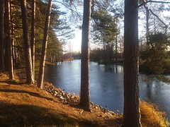 (Jelena1) Tags: trees winter naturaleza nature water ro forest canon river vinter agua eau wasser sweden hiver schweden natur rivire bosque skog rbol invierno sverige fluss wald arbre zima priroda vatten baum fort trd voda suecia norrland sude reka flod uma gstrikland drvece svedska mackmyra gavlen valbo canonefs1855mmf3556is gvleborgsln gvlen canon600d gvlekommun canoneos600d gvleborgcounty gvleriver mackmyrabruk