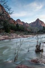 DSC_0838 (Steve_McCaul) Tags: beginnerdigitalphotographychallengewinner