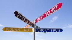 Piquant Nut & Creamy Velvet (ZeroOne) Tags: sky art bondi sign sydney signpost publicart sculpturebythesea trafficsign bondibeach epl3
