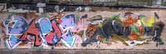 Papst x Ruin (Coloured City Vienna) Tags: vienna wien wall graffiti austria canal sterreich mural wand ruin crew danube papst donaukanal zfa wienerwand