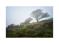 Andros landscapes (Christos Andronis) Tags: