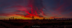 Pelican Point Playground (johnwilliamson4) Tags: blue red panorama orange playground clouds sunrise outdoor australia adelaide southaustralia flyingfox