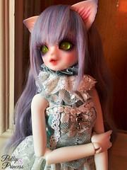 The Lovely Serenade (Pullipprincess) Tags: cute kid doll dolls kawaii neko bjd luts delf zuzu anthro balljointeddoll corni kiddelf