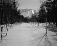Mt.Oputateshike from Shirogane road (threepinner) Tags: snow japan spring hokkaido   biei fujica hokkaidou shirogane 80mm f35   northernjapan  ebcfujinon mountainsnaps gf670  mtoputateshike  taisetsunationalpark