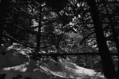 20160318_0115 (Simon Buchou) Tags: light snow france ice rock stone montagne rando climbing summit neige foret arbre moutain glace alpinisme pyrnes escalade avalanche ambiance randonne gavarnie sommet