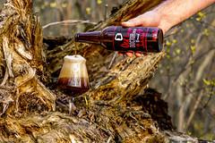 DSC_6498 (vermut22) Tags: beer bottle beers brewery birra piwo biere beerme beertime browar butelka doctorbrew