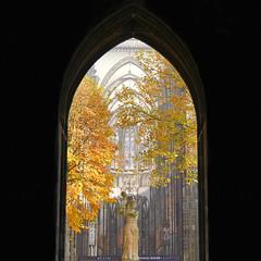 Gate under the Dom Tower, Utrecht (andzwe) Tags: city autumn trees tower netherlands dutch statue photography gate utrecht domtoren toren dom herfst nederland highkey lowkey beeld poort domplein doorkijkje uitsnede underthedom panasonicdmcgh4 domunder domkwartier onderdom