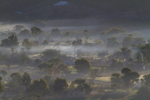 Morgennebel in Pushkar