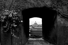 Prospective (Dhiil) Tags: roma san finestra cupola citt pietro prospettiva