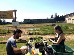 Outgrowing Hunger Community Garden_Prepping