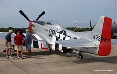 160329_06_P51 (AgentADQ) Tags: plane airplane fighter force florida aviation air north american leesburg mustang redtail commemorative p51d