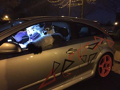 This is Arco Fluffypaw and me at the Zeche Ewald in the car of Luka :3 Totally random shot #FursuitFriday (Keenora Fluffball) Tags: furry kee fursuit keenora