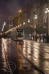 Seville Jan 2016 (12) 055 - Wet and dark in the city (Mark Schofield @ JB Schofield) Tags: santa plaza bridge parque people streets wet public caf rio architecture bar night umbrella reflections river dark ceramic puente graffiti la los spain guadalquivir san expo cathedral maria candid transport iglesia tram seville espana cruz tiles parasol universidad alcazar pavilion oranges harp andalusia cobbles encarnacion luisa giralda isla embankment metropol arenal justa triana macarena remedios cartuja alamillo bernado chapina