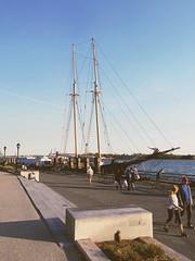 #NewYork #Liberty #ClipperTallShip #Cruise #favorite #Sailboat #TwilightCruise #sunset #drinks #music #dancing #travel #StellaArtois #Sails #tasty #beer #SundayFunday (kelsey_erinbook13) Tags: travel cruise sunset music favorite newyork beer sailboat liberty dancing sails tasty drinks stellaartois sundayfunday twilightcruise clippertallship