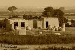Rural Life Of Sind Pakistan (TARIQ HAMEED SULEMANI) Tags: travel pakistan house tourism trekking mud sensational sindh tariq monocrome rurallife supershot sulemani tariqhameedsulemani
