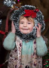 355/365 Christmas Lily - (dorsetbays) Tags: christmas decoration garland wreath christmasdecoration 365 christmaswreath christmasgarland 365project aphotoadayforayear