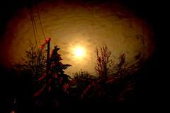 moon light2 (Woodmizer62) Tags: winter snow cold idaho moonlight harborisland postfalls