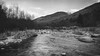 B&W-00682 (alessandro.polla) Tags: bridge blackandwhite bw italy mountains ice nature water river landscape woods iced woodbridge tentino